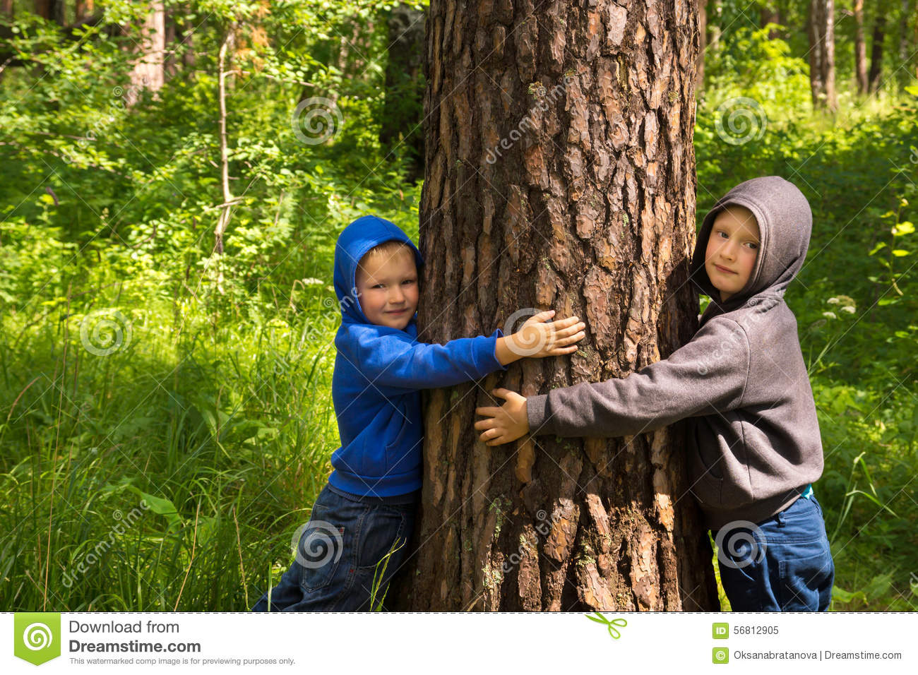 Children Hugging Pine Tree Stock Image Image Of Peace