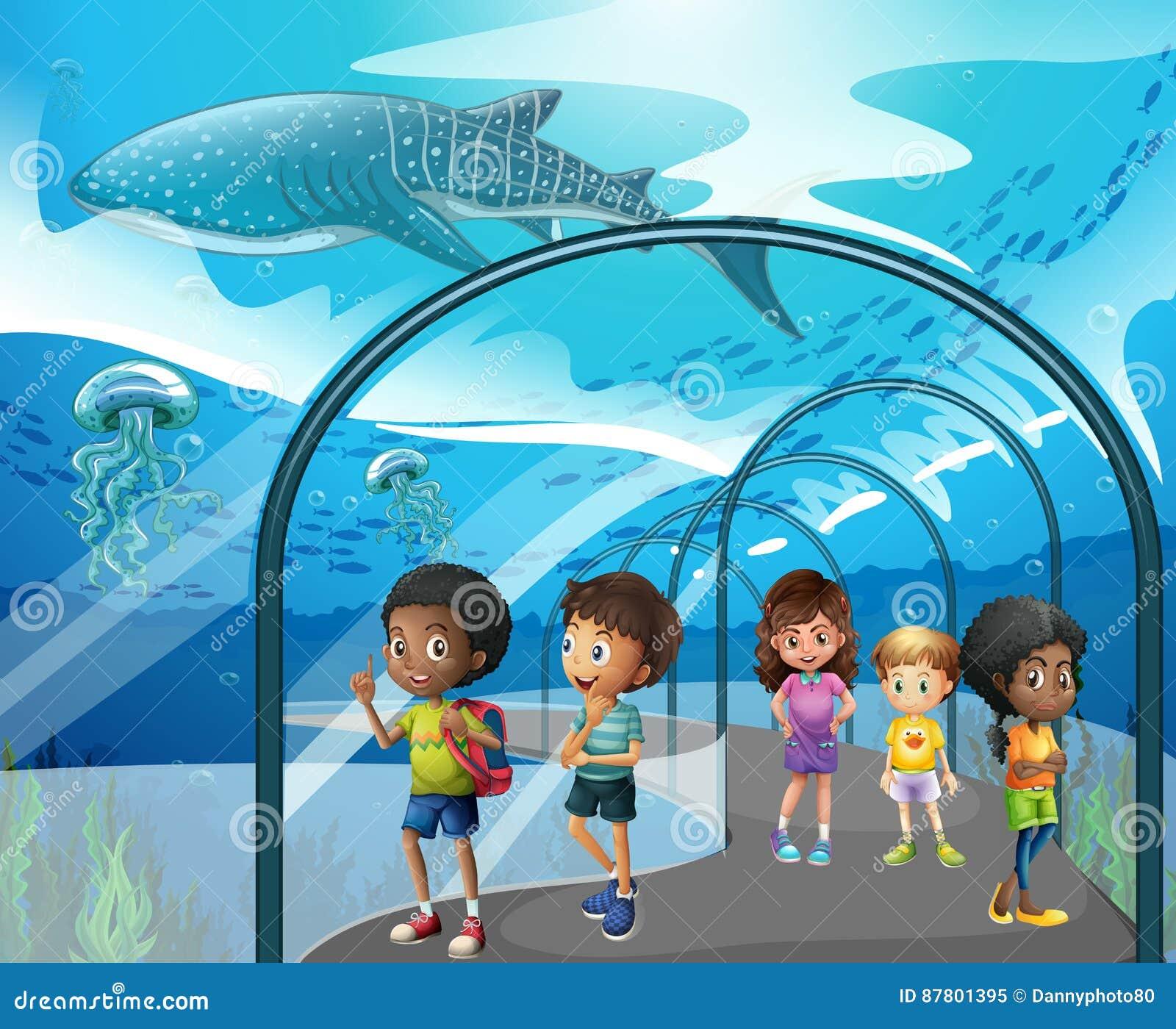 Children looking at fish in aquarium stock vector image for Childrens fish tank