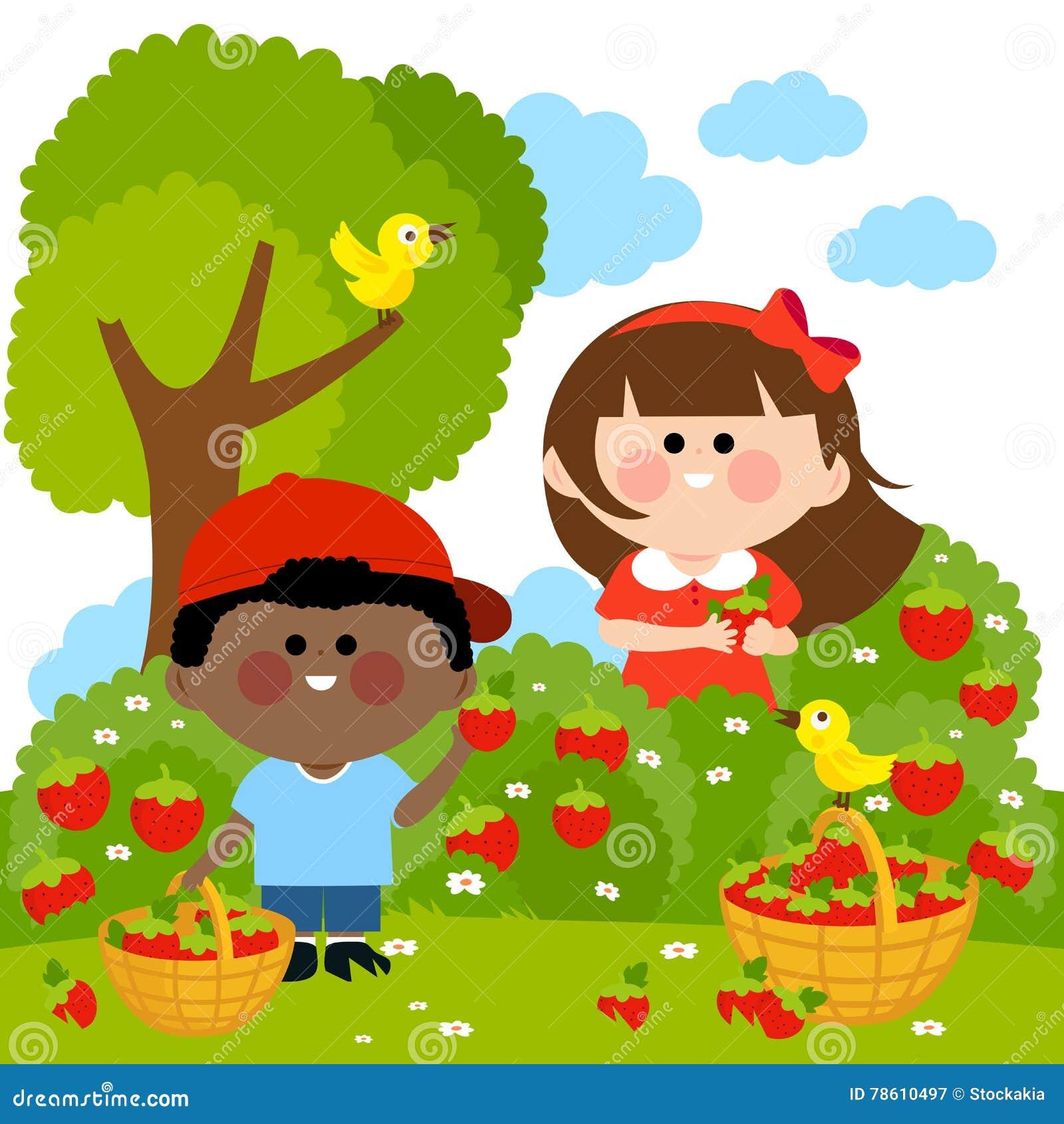Children Picking Strawberries Stock Vector - Illustration ...