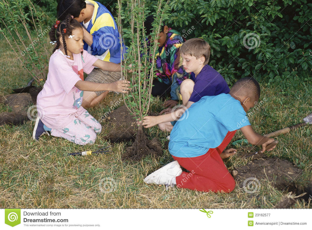Children planting trees editorial photography. Image of ...