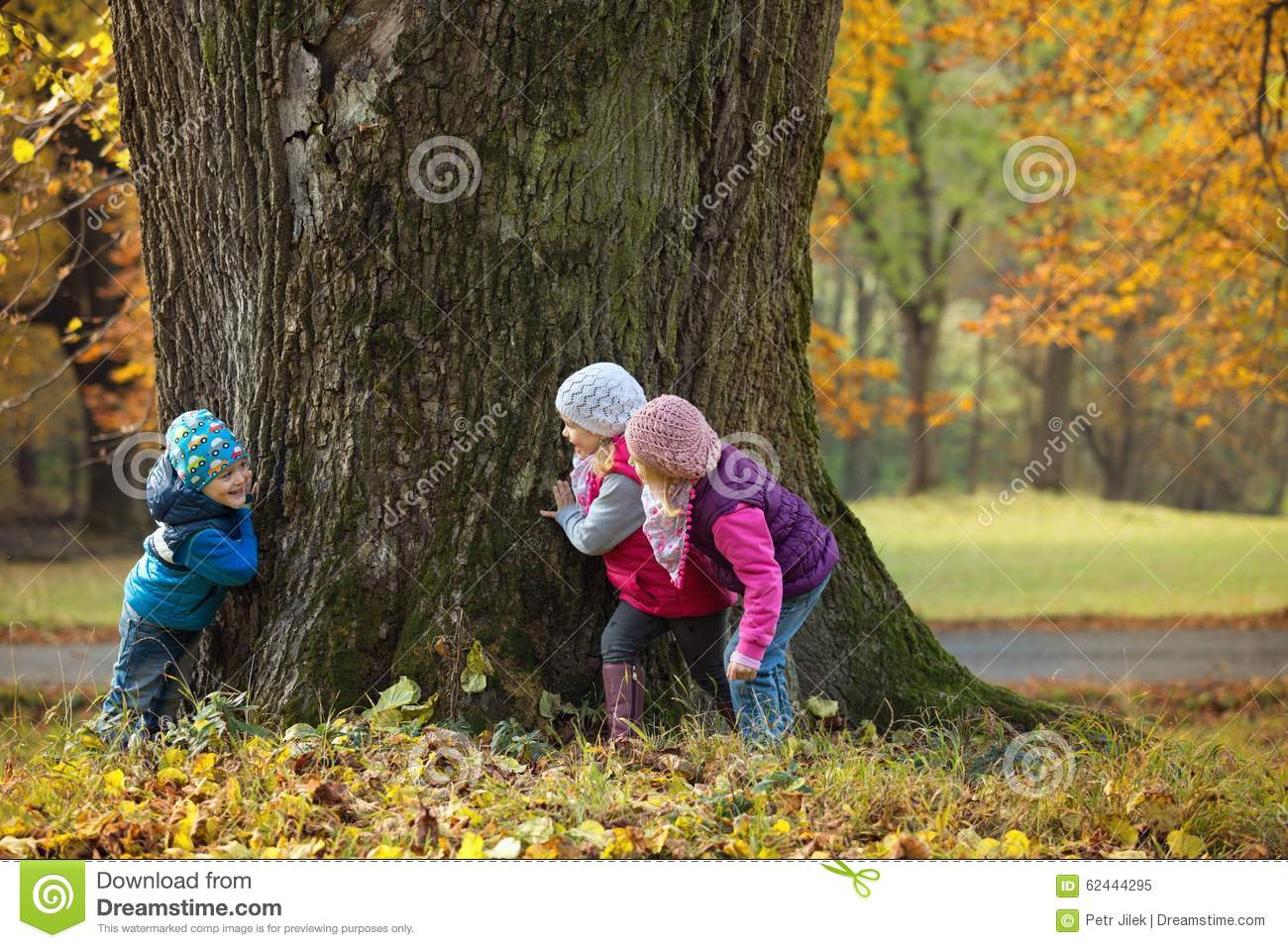 children playing hide and seek stock photo image 62444295