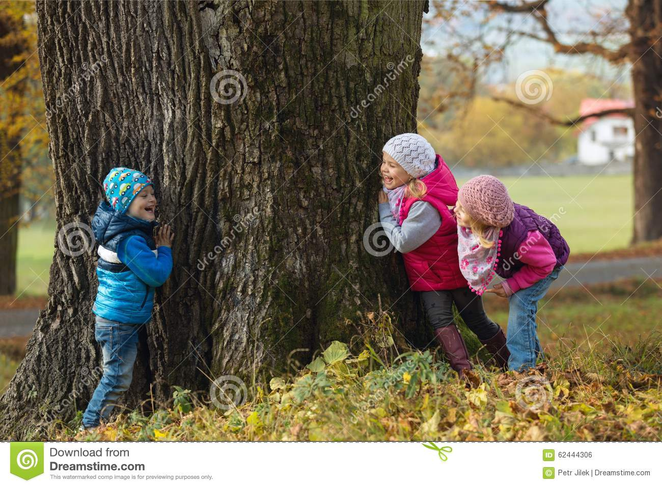 children playing hide and seek stock photo image of