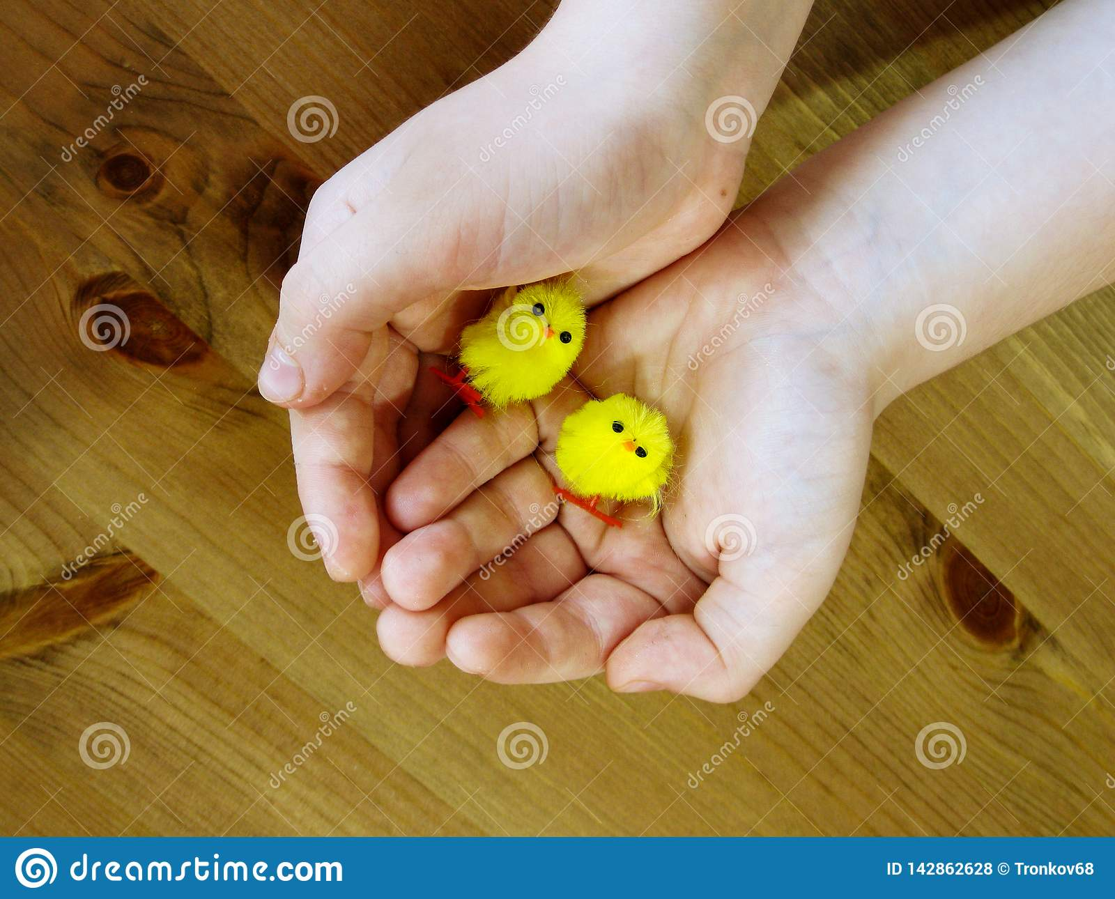 Children`s hands are holding two small toy chickens.
