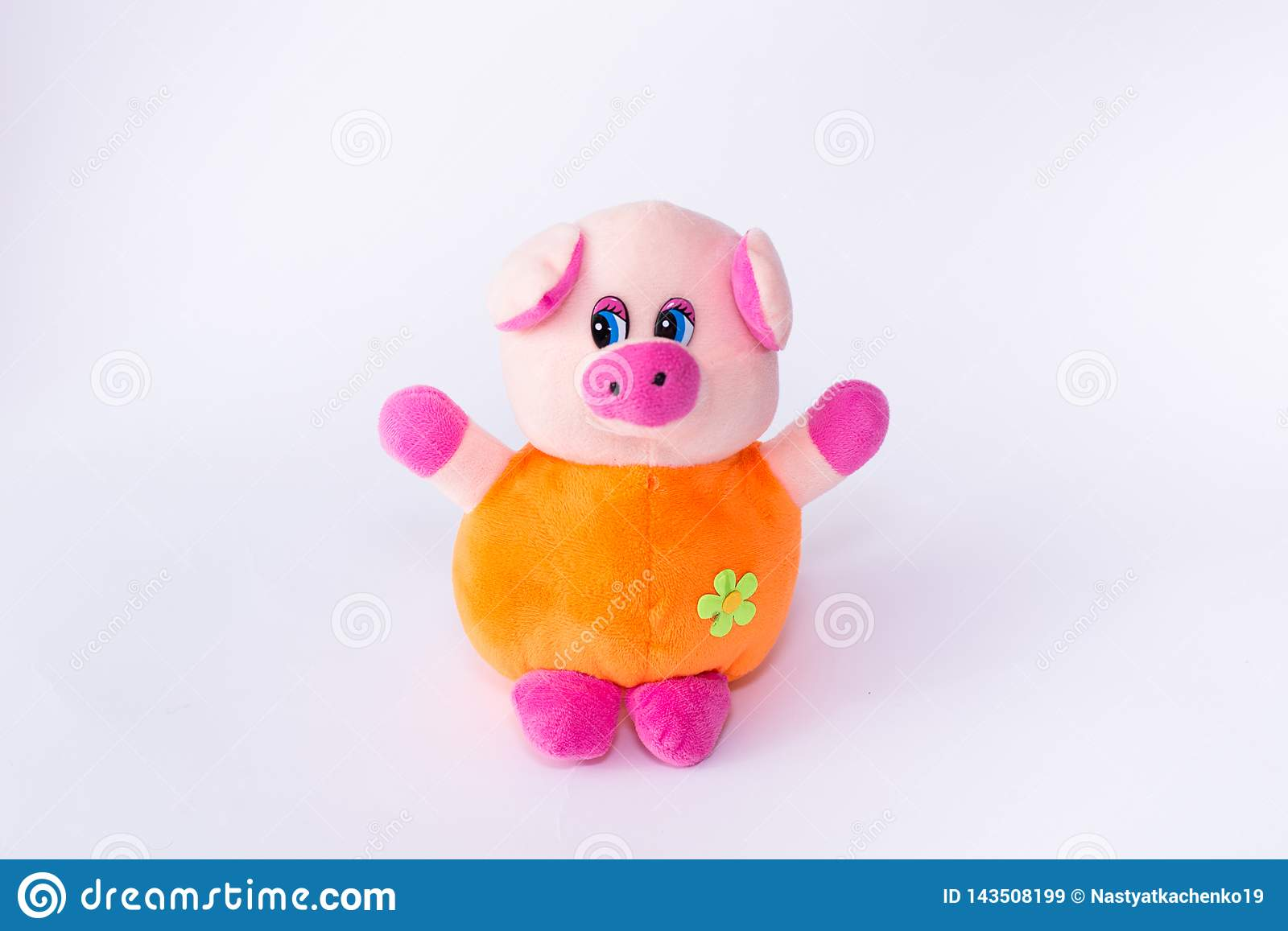 Children`s soft toy pig, cute pig on a white background