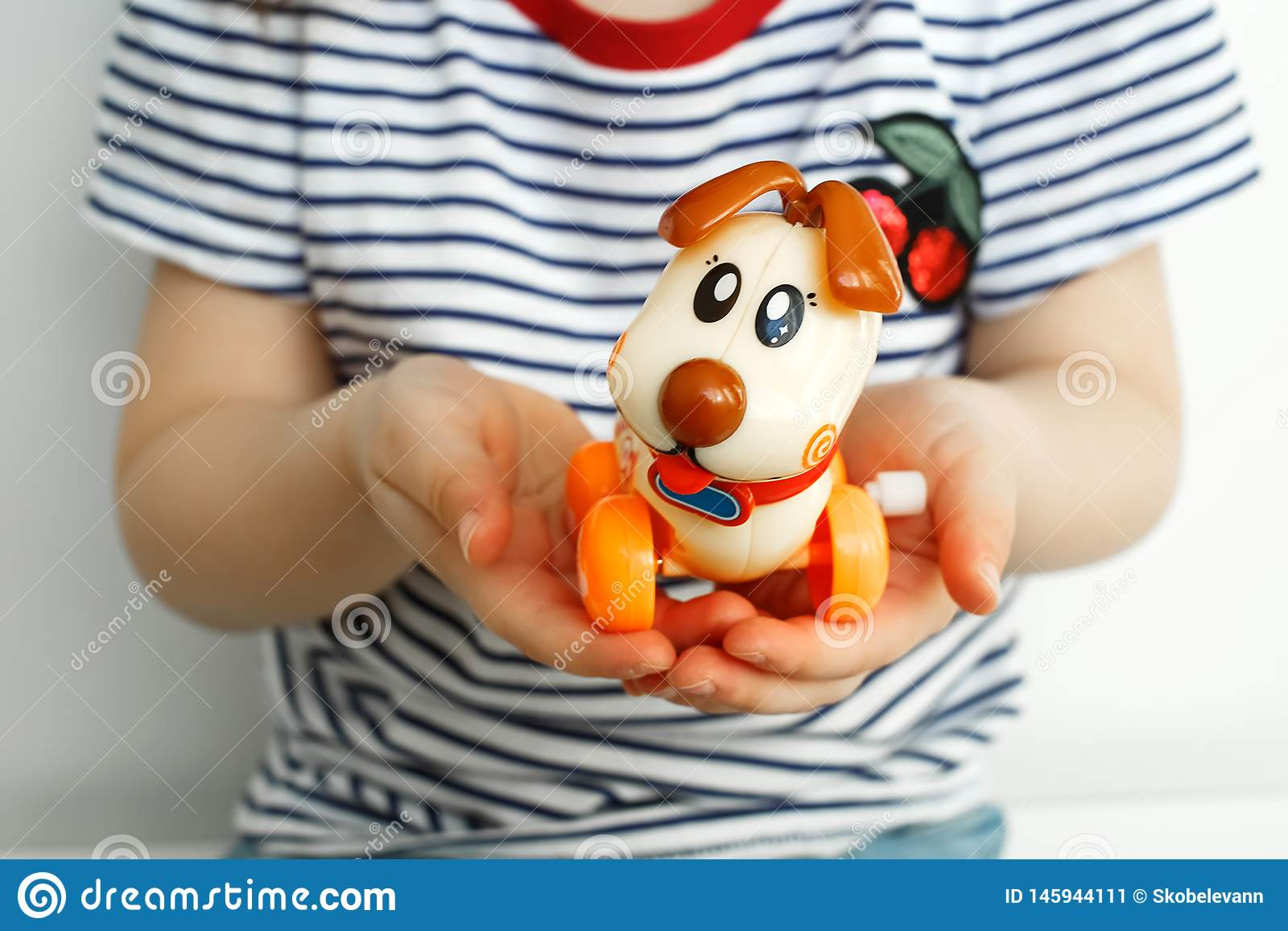 Children`s toy dog ​​in the hands of a child