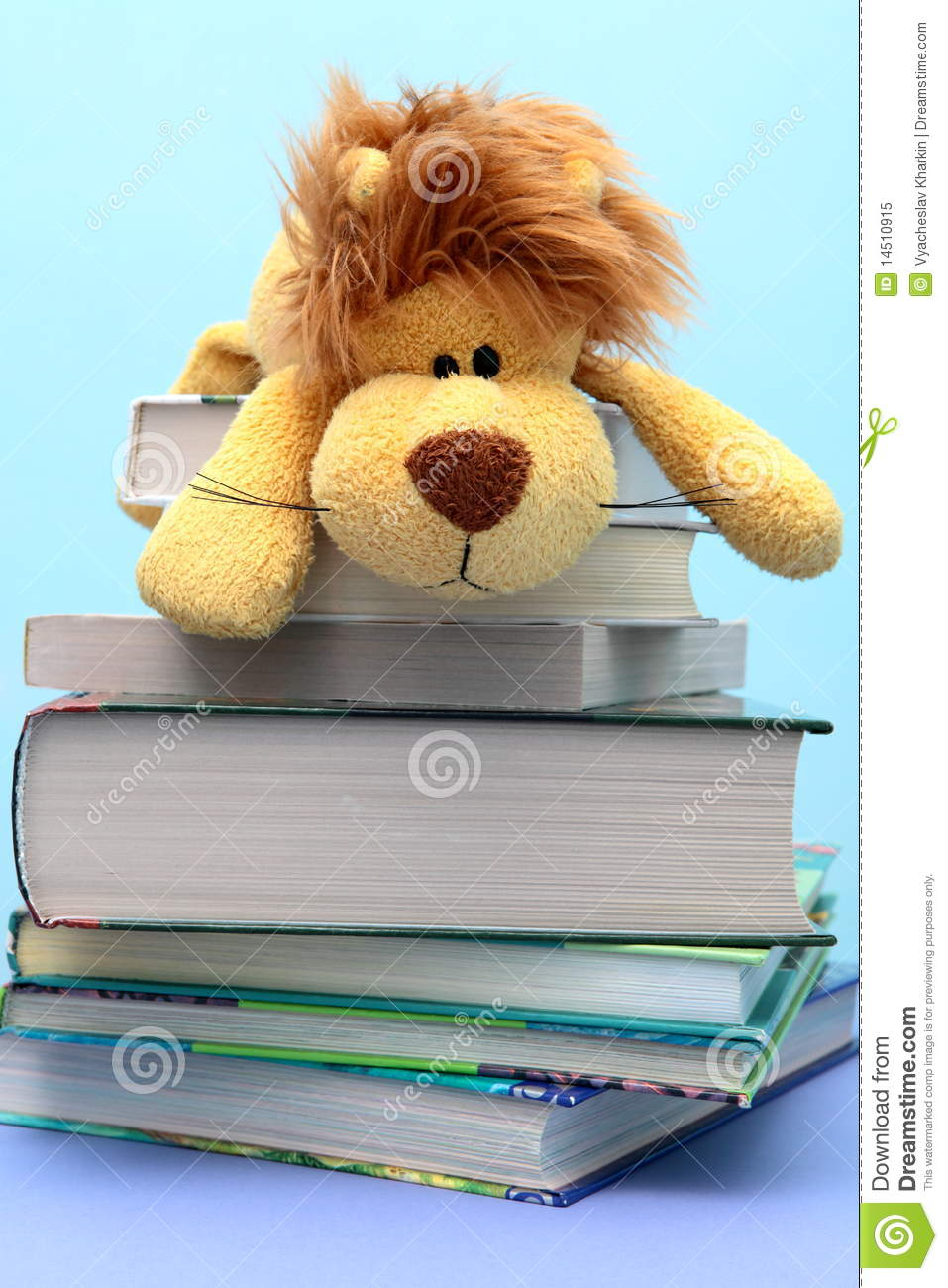 Children s toy lies on the combined books