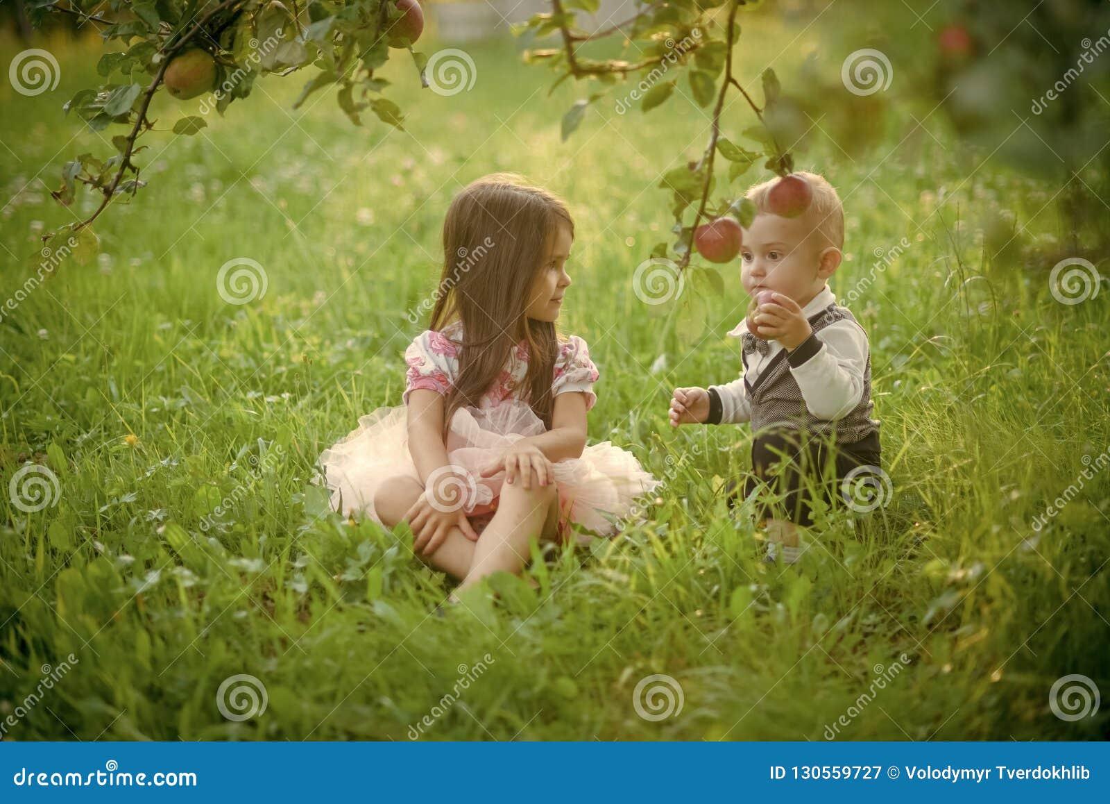 Children sit under apple tree in summer park