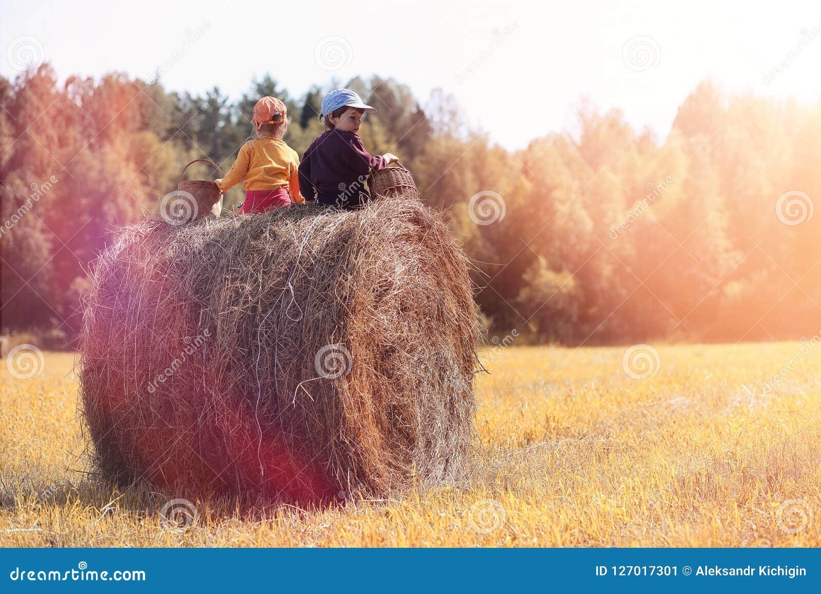 Children in the village walk through the autumn forest and gathe