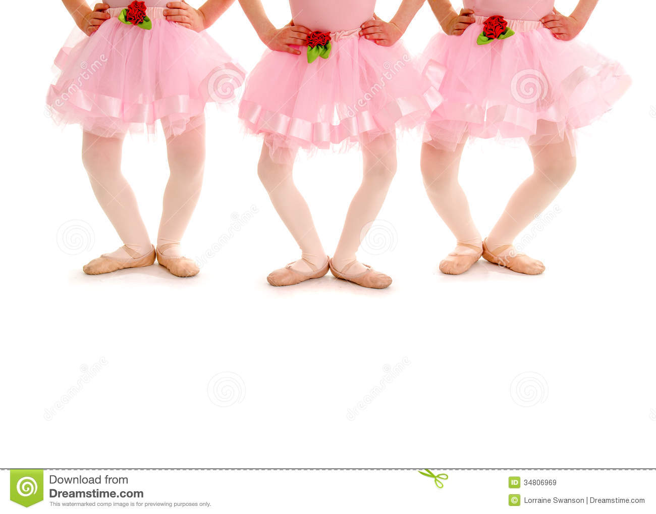 ... small girls in Ballet Recital Costume and Slippers practice Demi Plie