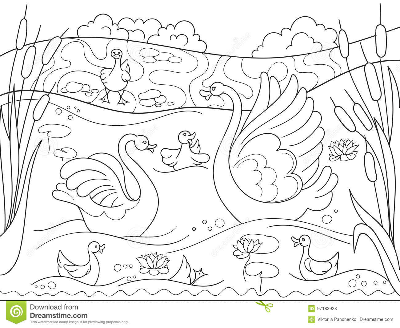 Childrens Coloring Book Cartoon Family Of Swan On Nature Stock