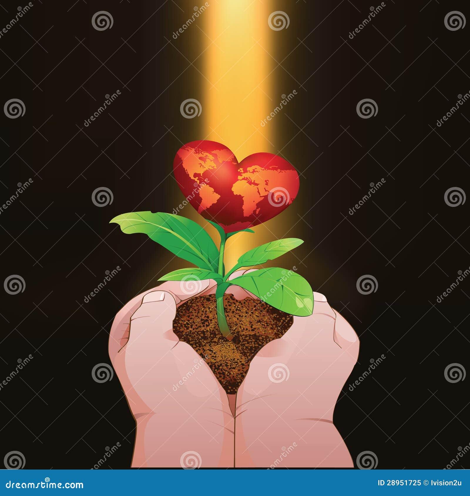 Childs wręcza trzymać małego czerwonego kierowego drzewa