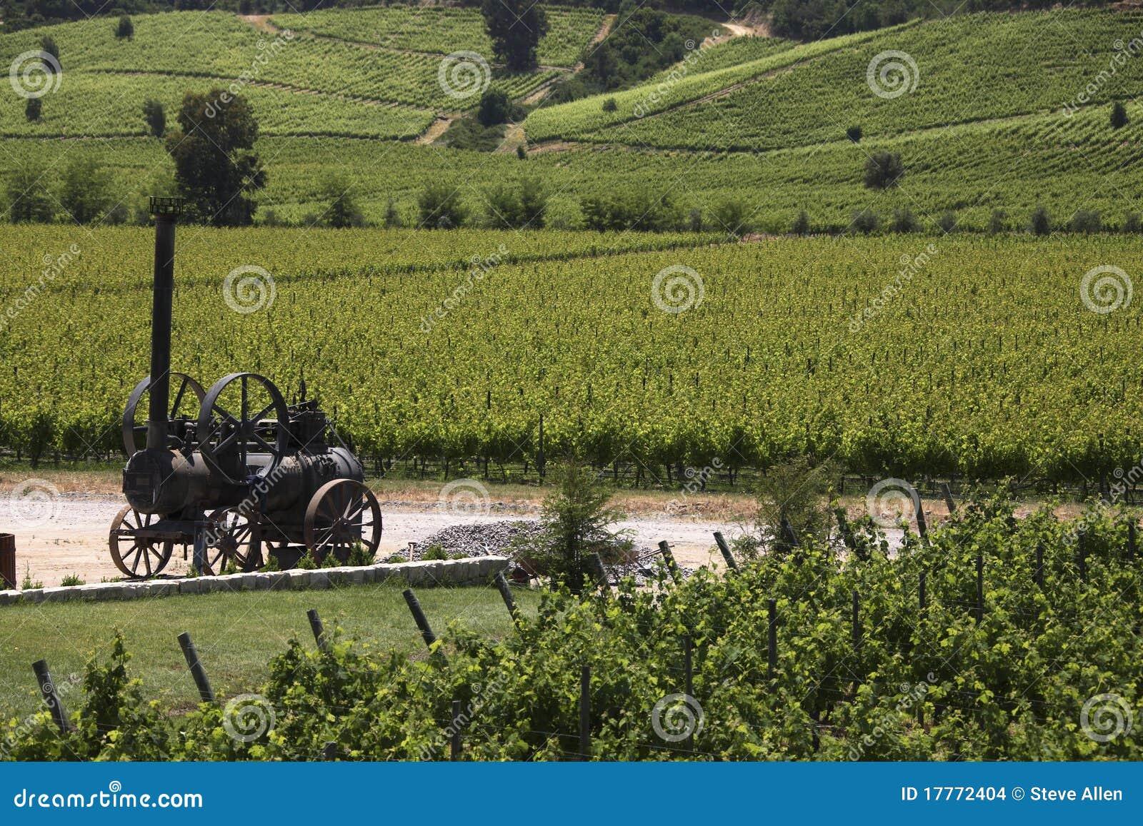 Chile colchagua doliny winnicy