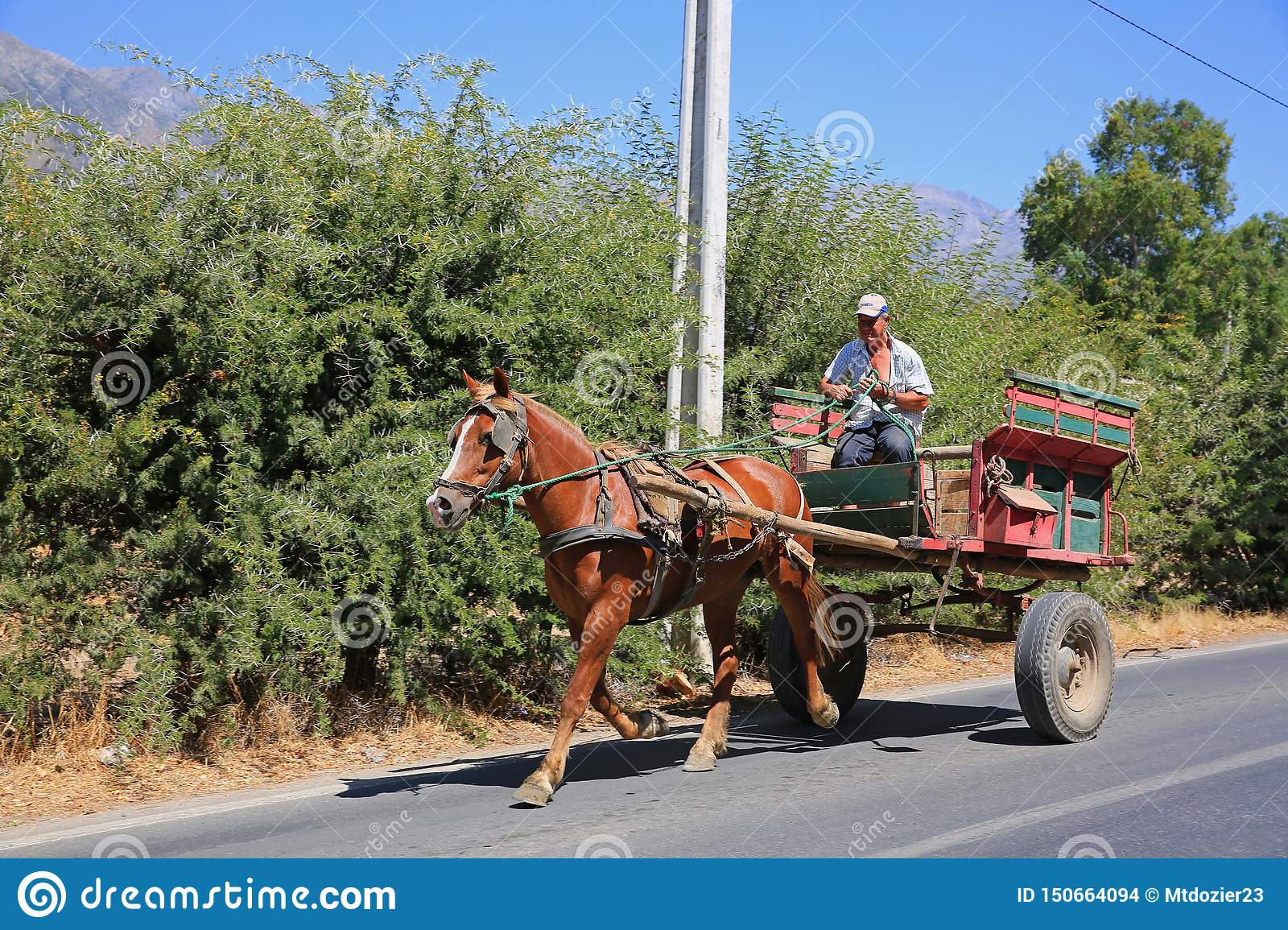 Chilean Farmer Driving Colorful Horse-Drawn Cart