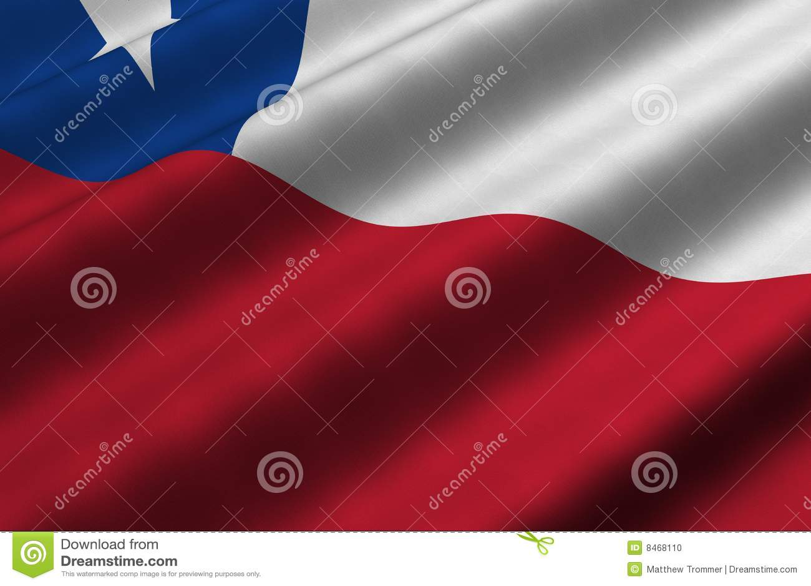 Chilensk flagga