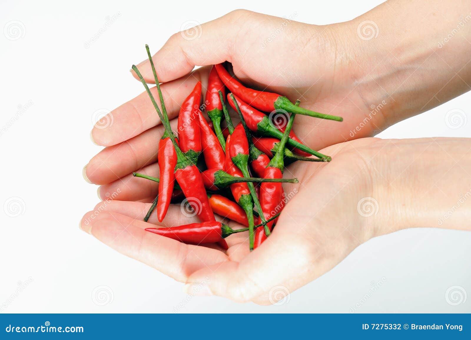 Chiles rojos 2