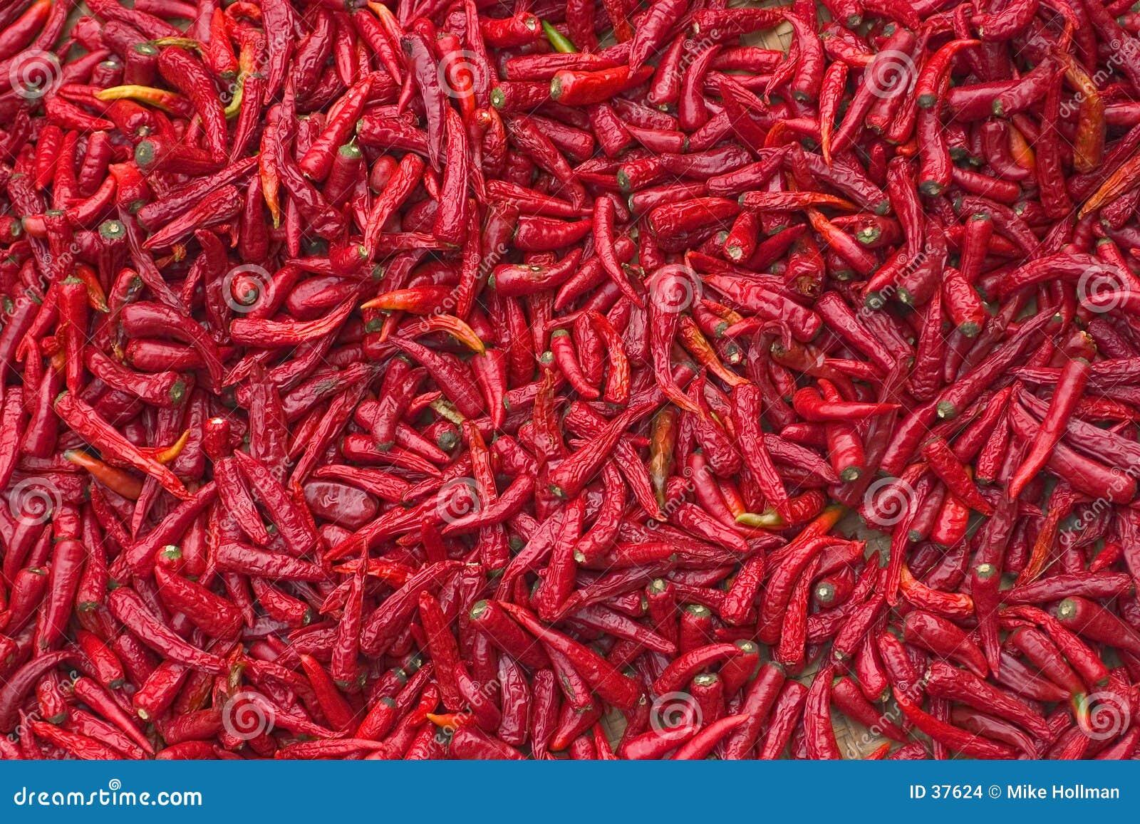 Download Chiles rojos foto de archivo. Imagen de peeper, ingrediente - 37624