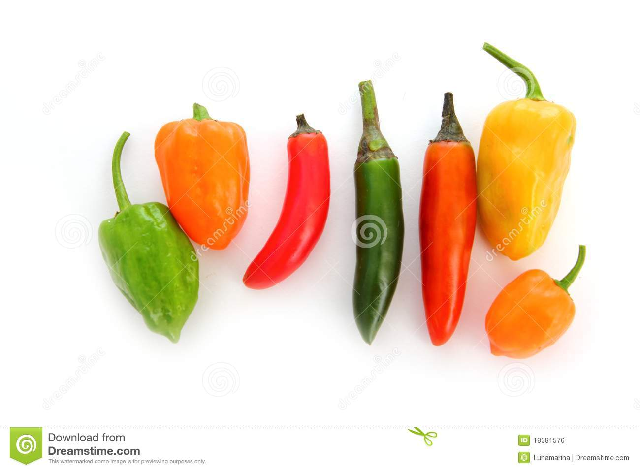 Chili Habanero Serrano Hot Mexican Peppers Royalty Free Stock Image ...
