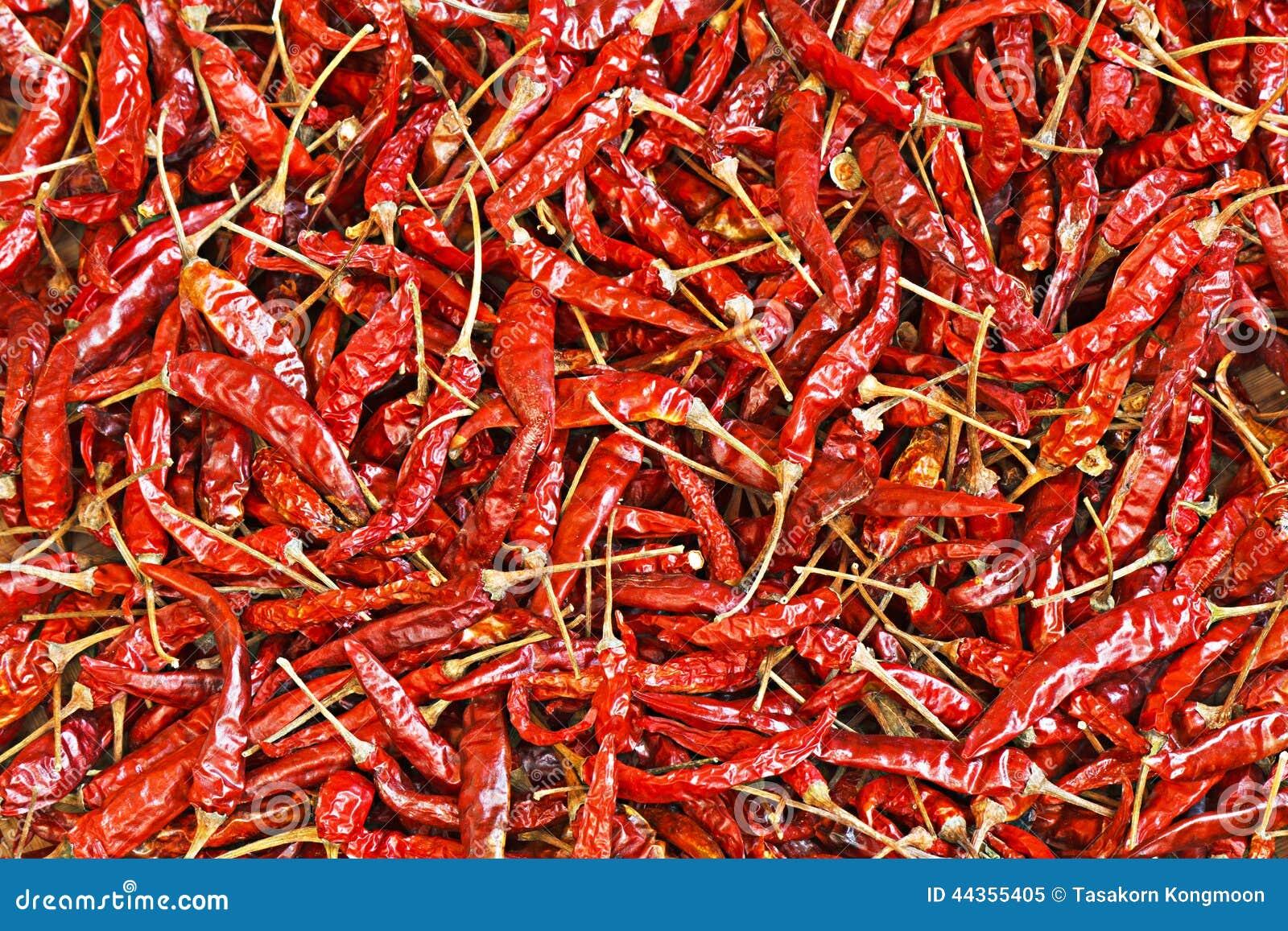 Chili For Pattern rosso asciutto