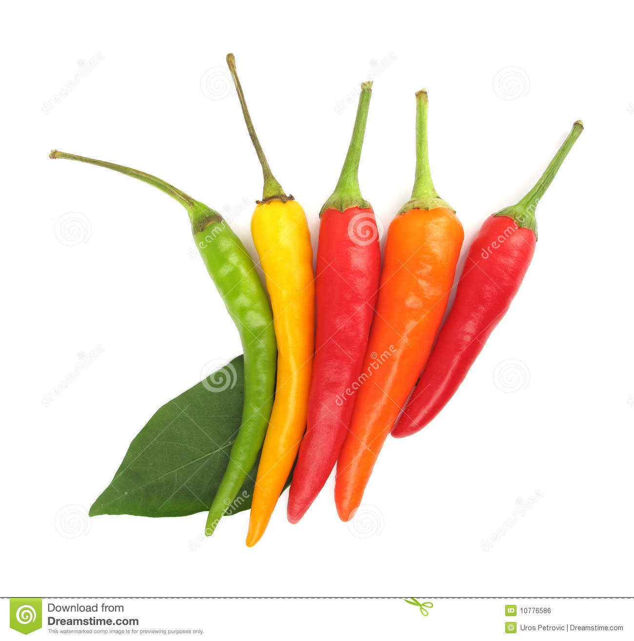 Chili peppers paprika