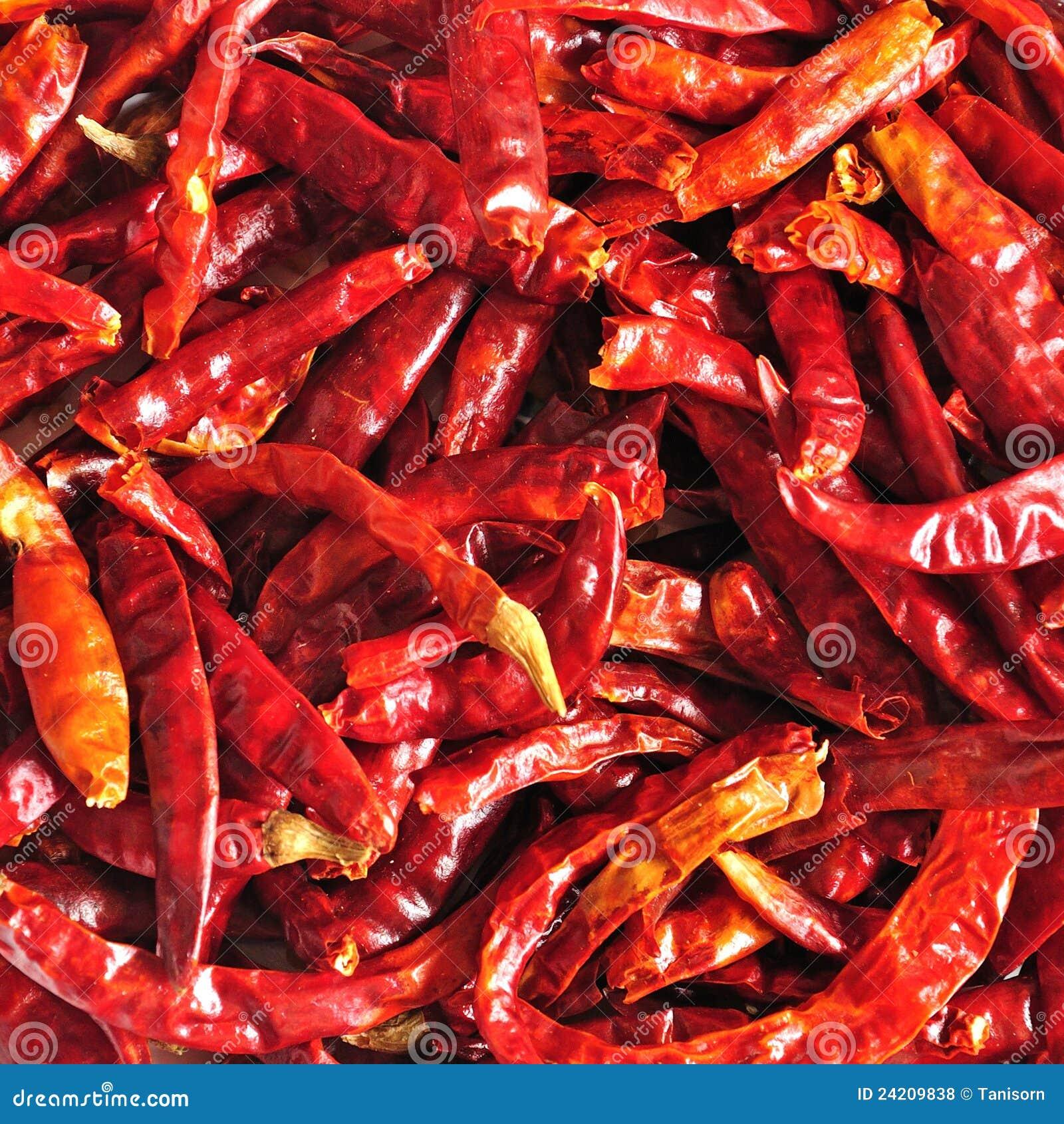 Chili zakończenia wysuszony karmowego składnika tajlandzki up