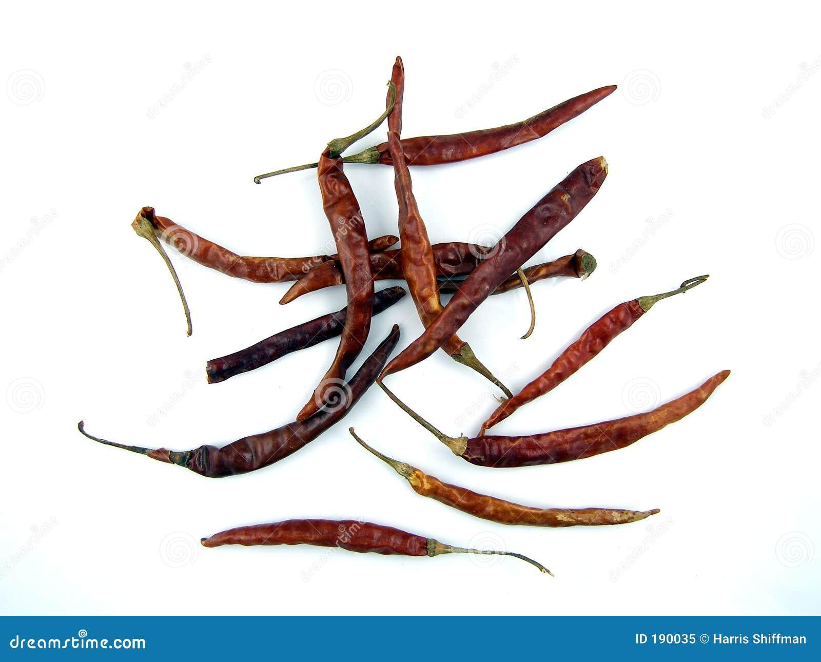 Chilis secados del arbol
