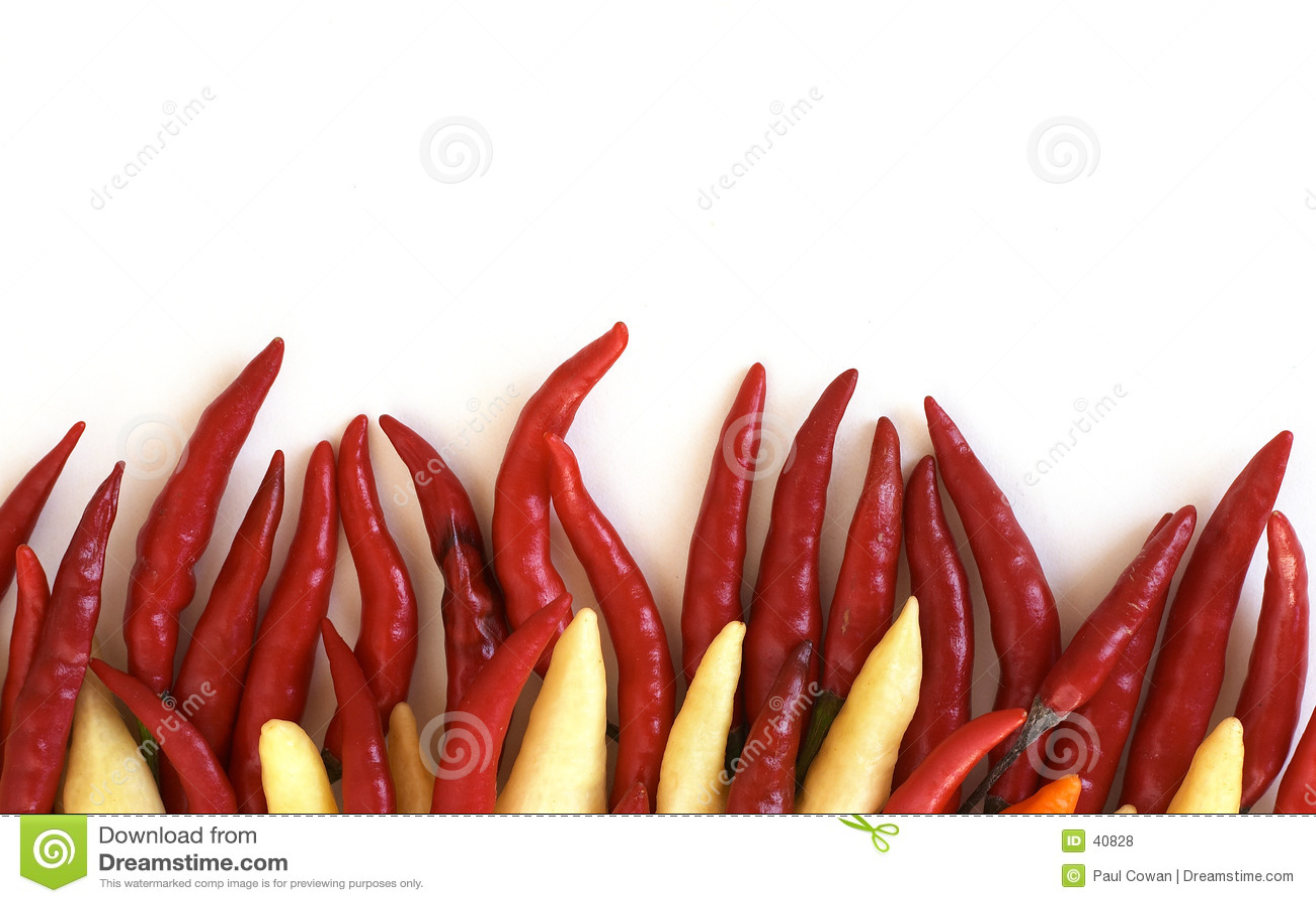 Chillies ogniści