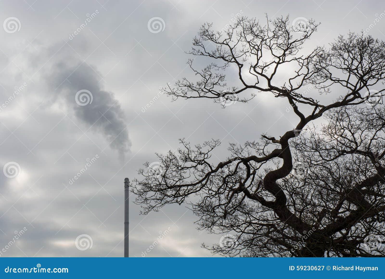 Download Chimenea Inútil Del Incinerador Imagen de archivo - Imagen de árbol, pila: 59230627