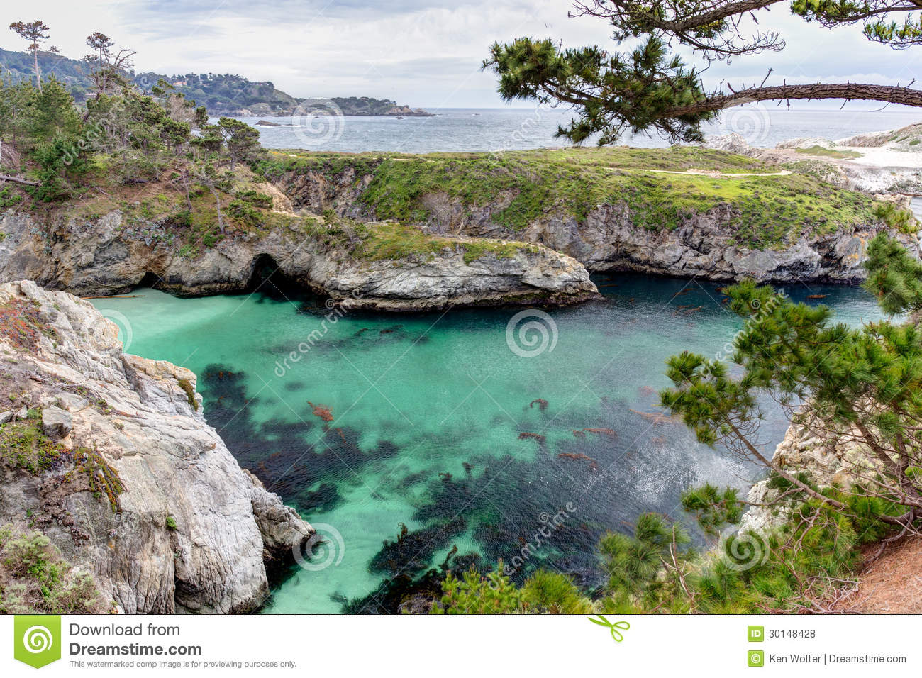 Point Lobos State Natural Reserve Royalty Free Stock Photos - Image ...