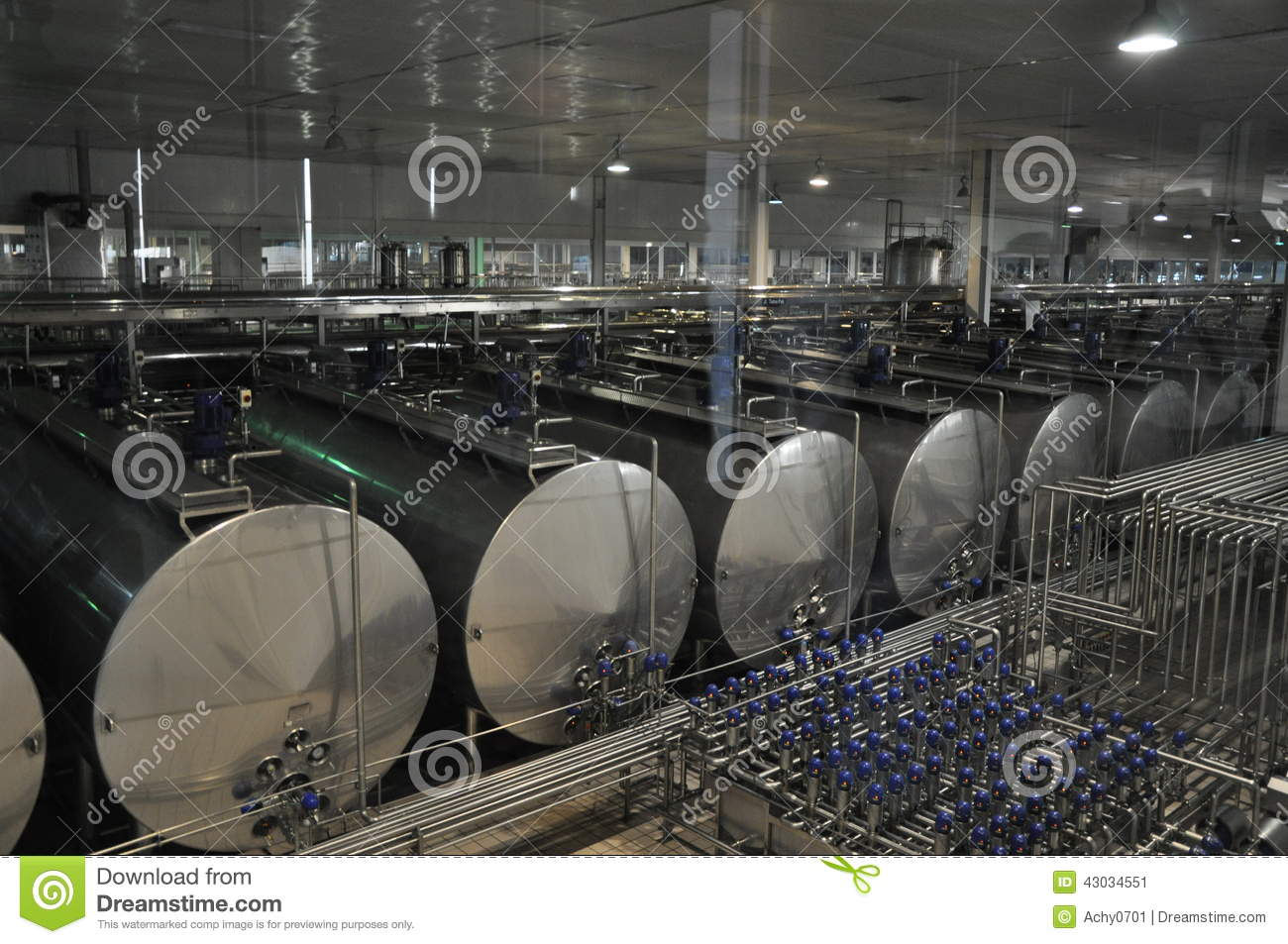 Manufacture manufactory milk and dairy products