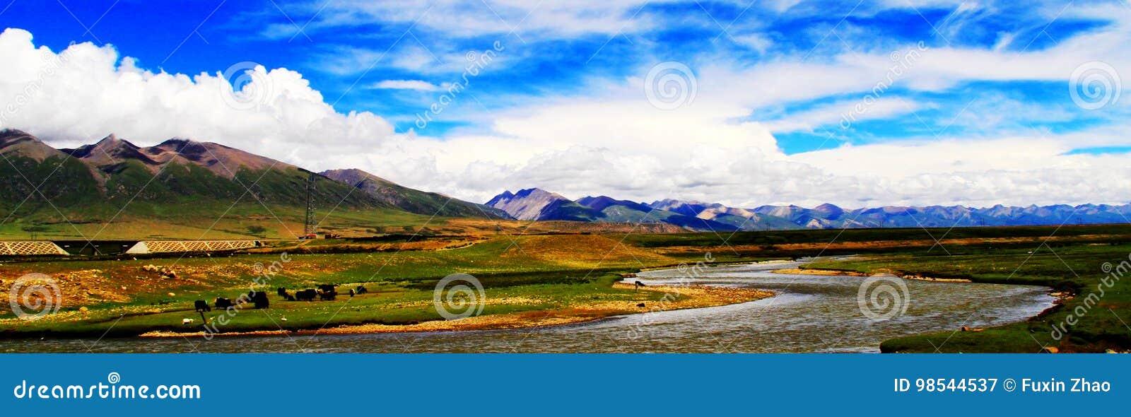 China`s Tibet, Northern Tibet grassland