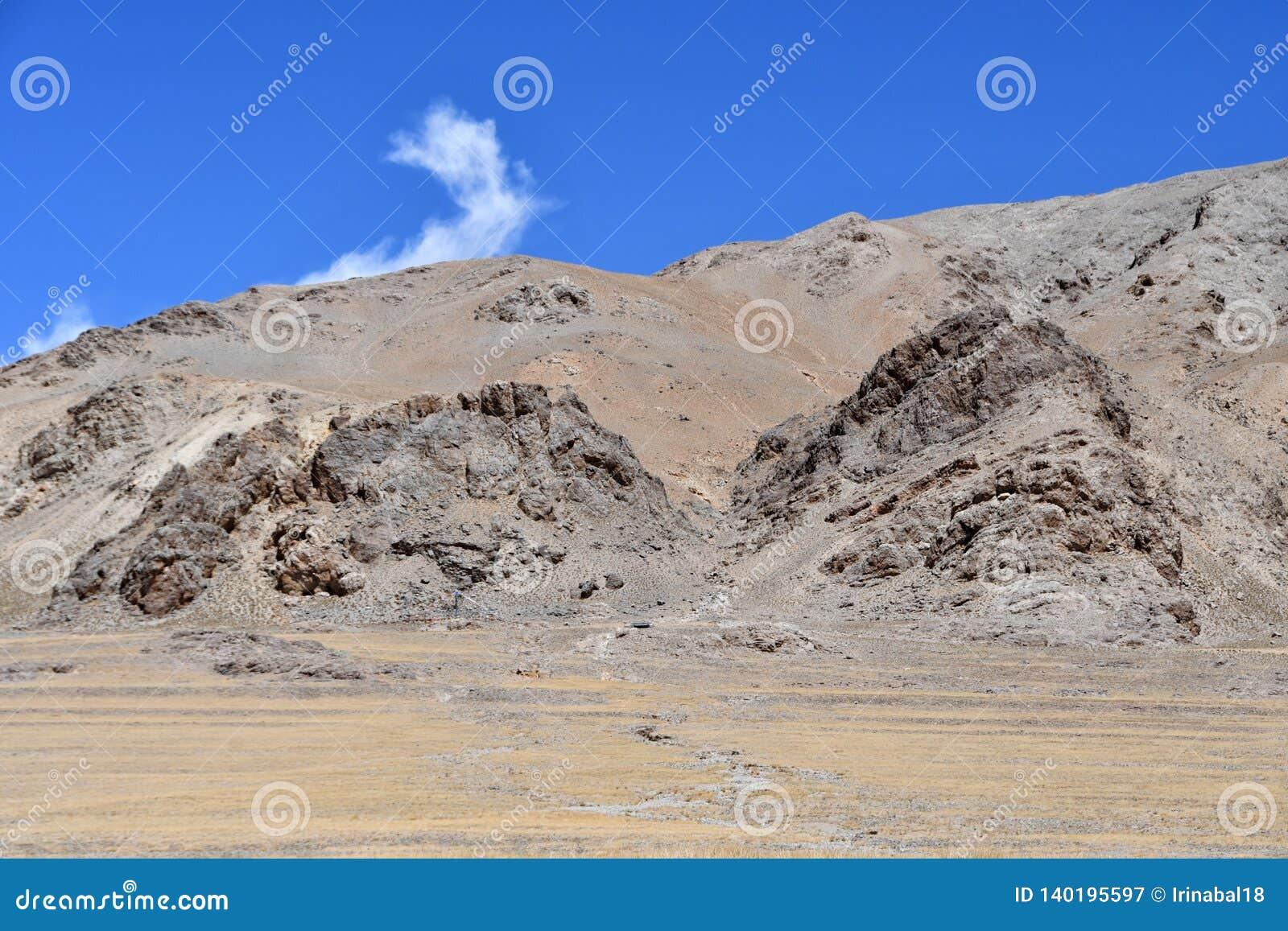 China, Tibet Himalaja im Bereich von See Teri Tashi Nam Co im Sommer n-Sorge wird gegenüberstellen mythische Wesen gelesen