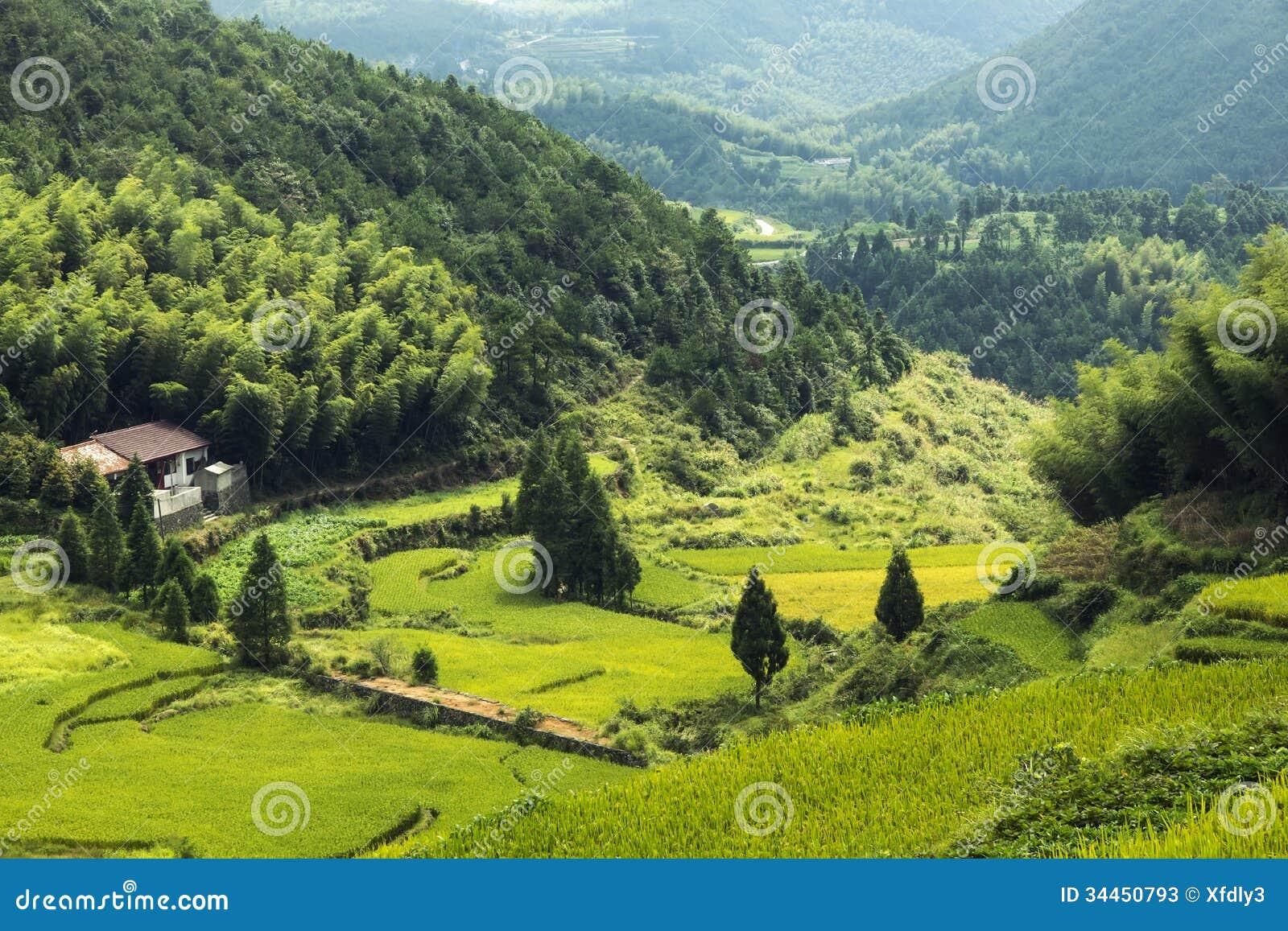 China Wenzhou Landscape Mountain Scenery Stock s Image