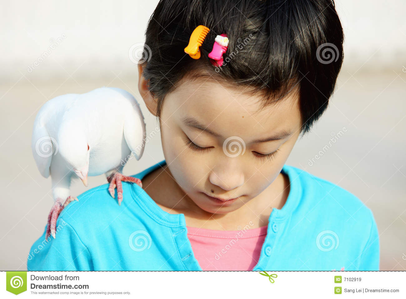 Chinese child with pigeon stock image. Image of asian ...