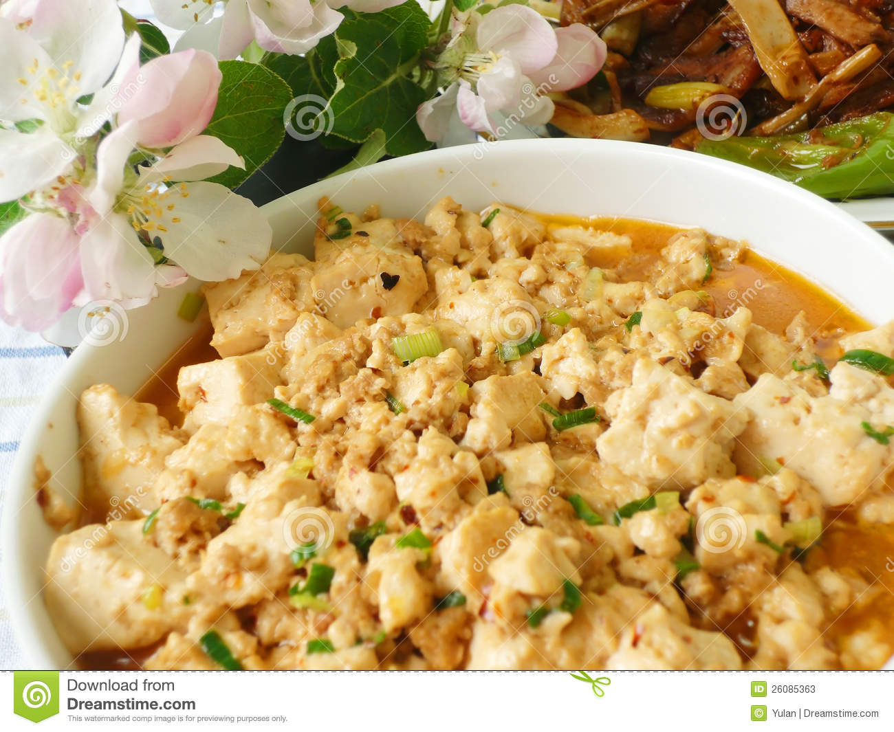 Chinese Food Specialty - hot-and-spicy Mapo Bean Curd, Tofu.