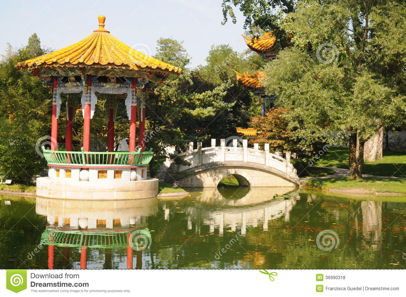 Chinese garden royalty free stock photos image 36990318 for Jardin chinois 78