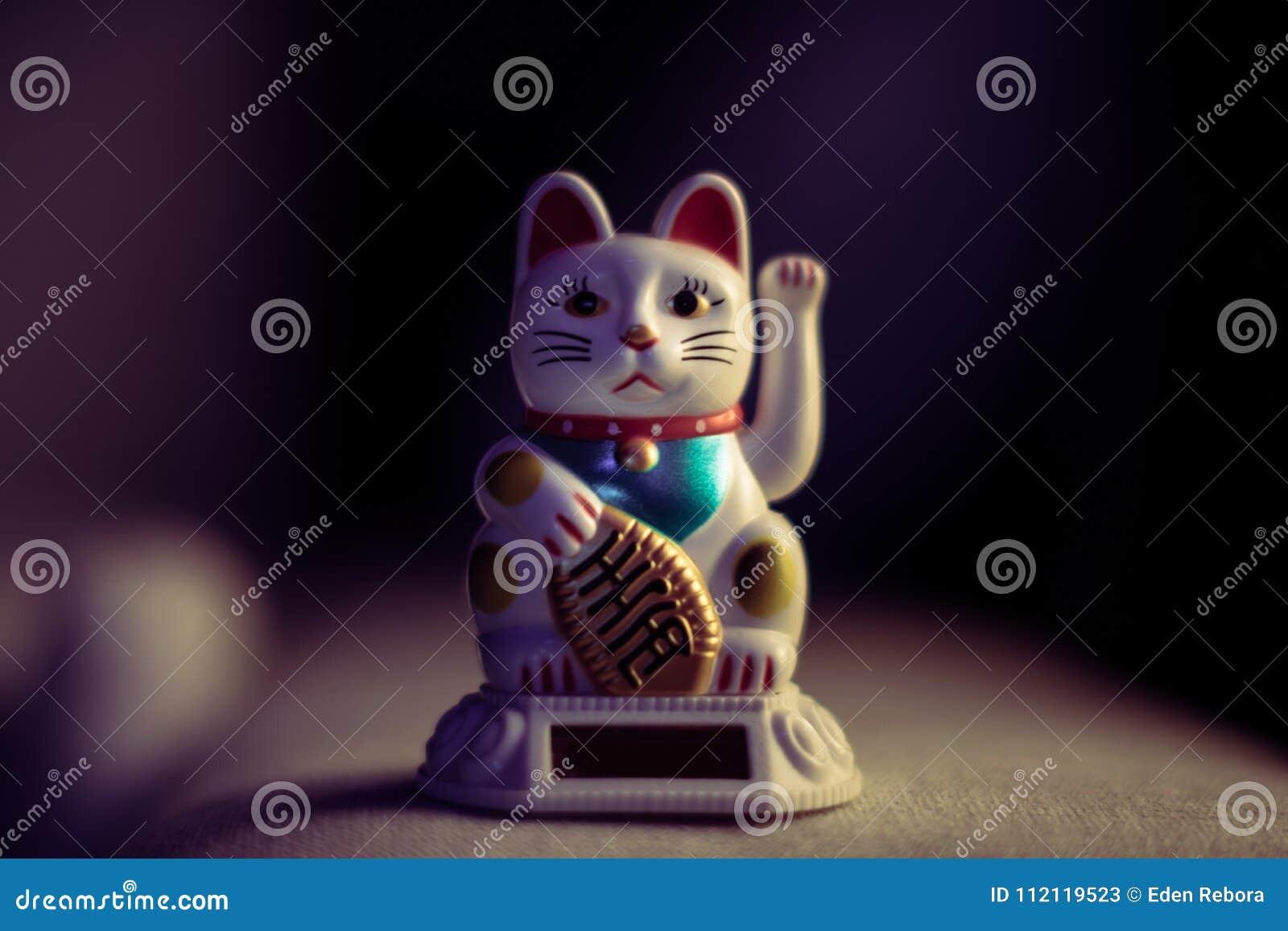 Chinese gelukkige kat in uitstekend licht