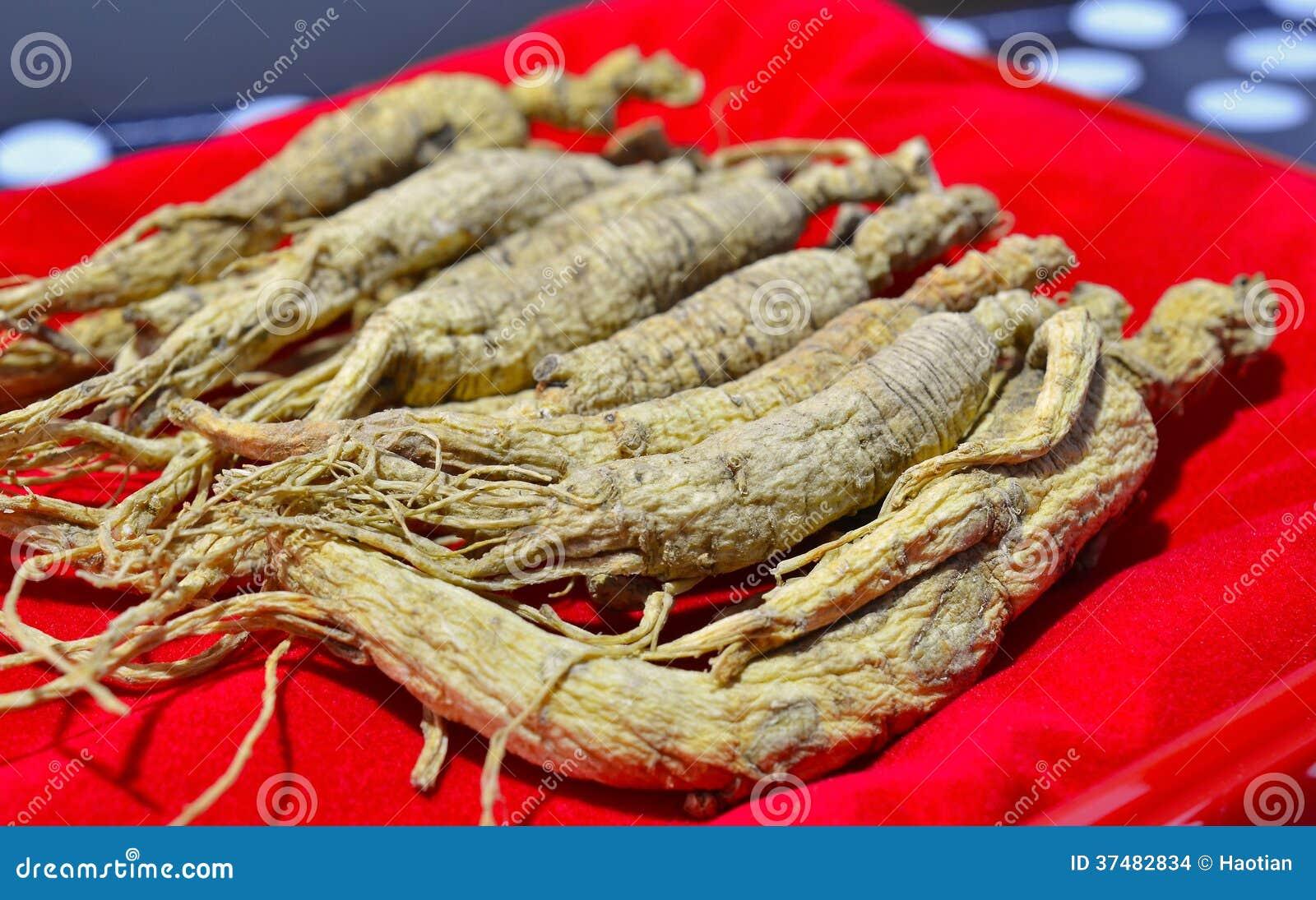Chinese Ginseng Stock Photo