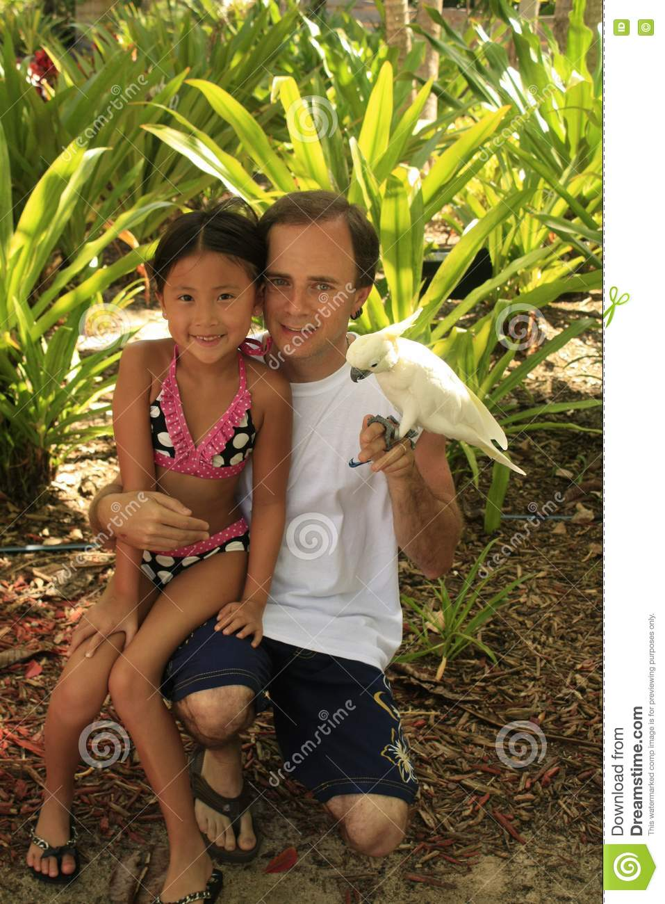 Chinese Girl Holding Bird With Dad Stock Image Image Of