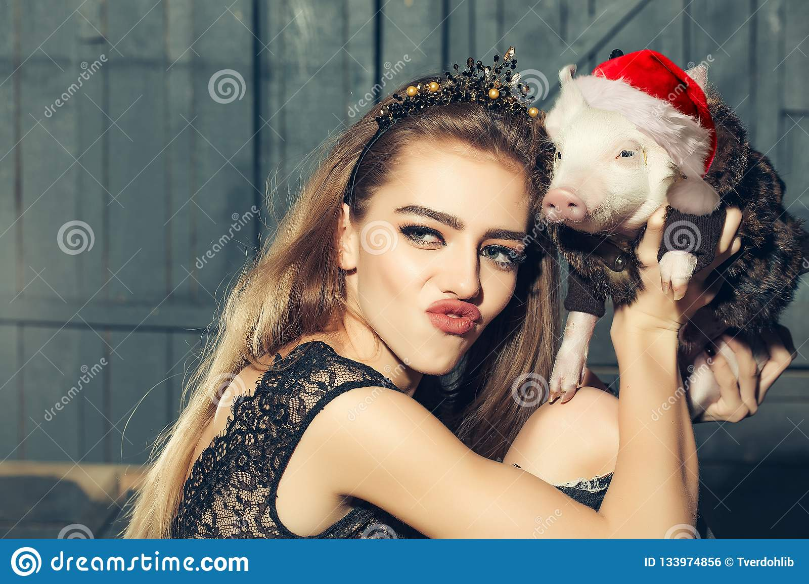 Chinese New Year 2019. Lucky Pig. The year of the pig. Womans with baby pig with christmas hat celebrating Chinese New
