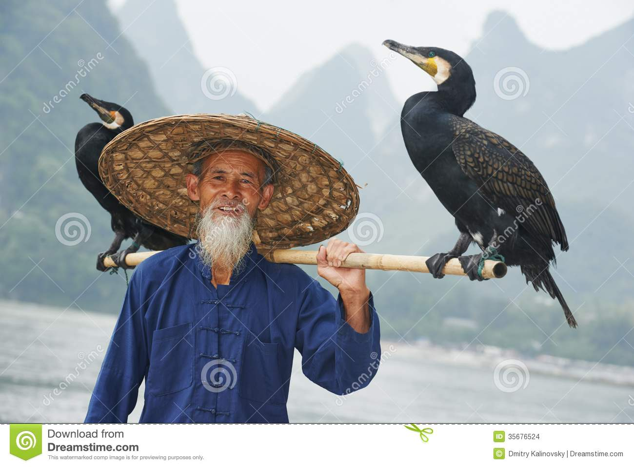1d3c837f3ca Chinese Old Person With Cormorant For Fishing Stock Photo - Image of ...