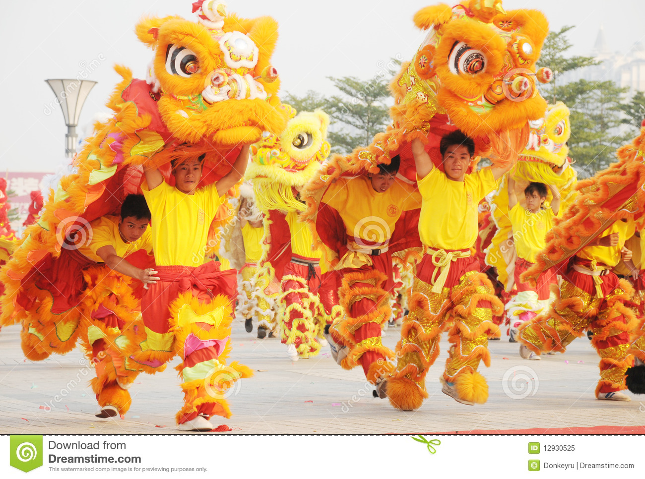 Chinese people playing lion dance celebrating the coming new year,2010 ...