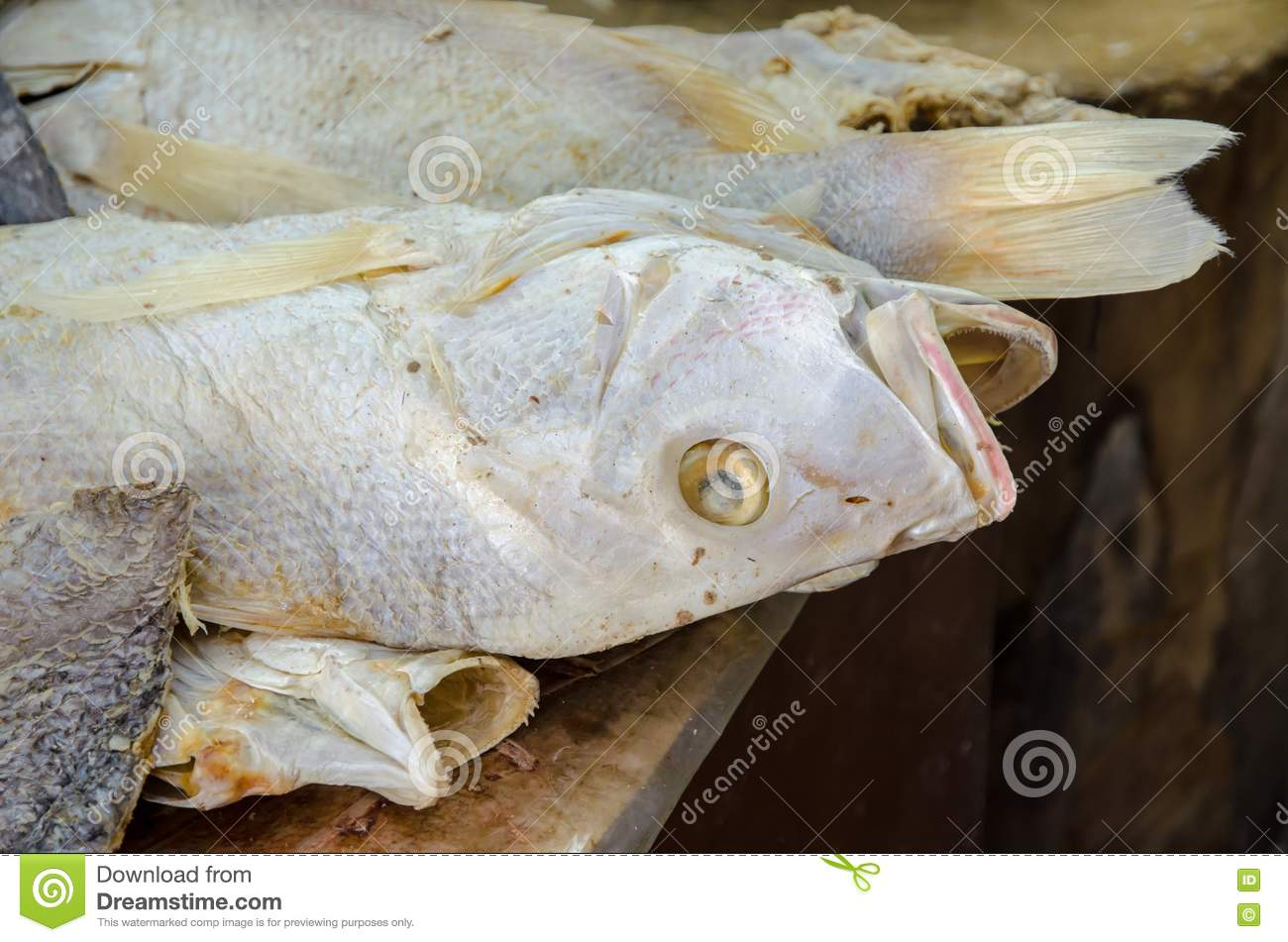 Chinese salted fish stock photography image 24856222 for Chinese salted fish