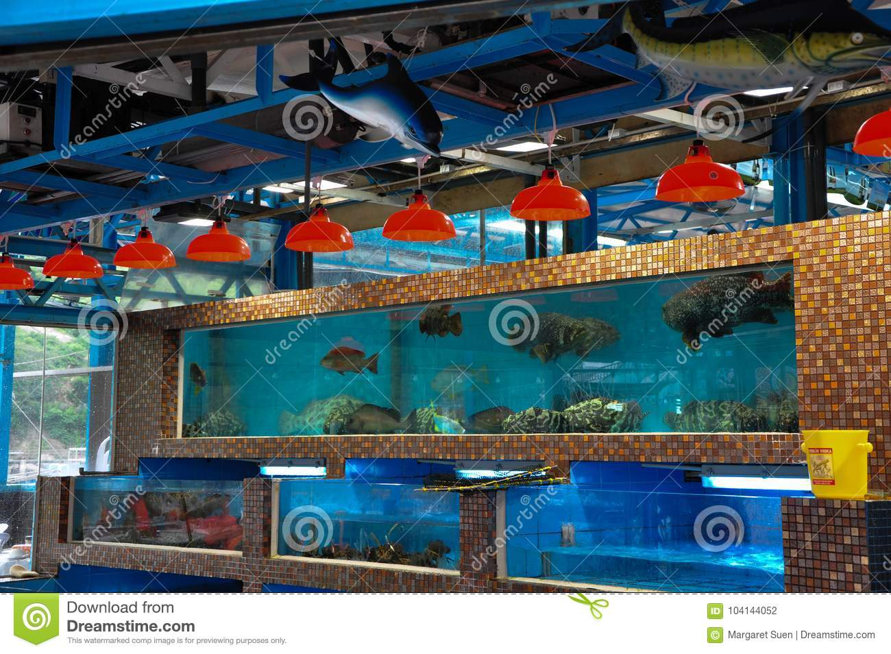 Chinese Seafood Restaurant Fish Tanks Stock Photo Image Of Seafood Shop 104144052