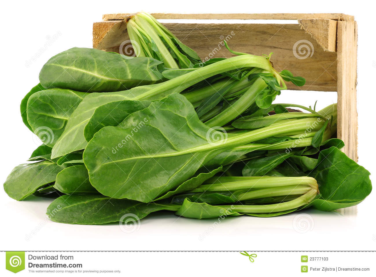 ... spinach (Ipomoea aquatica) in a wooden crate on a white background