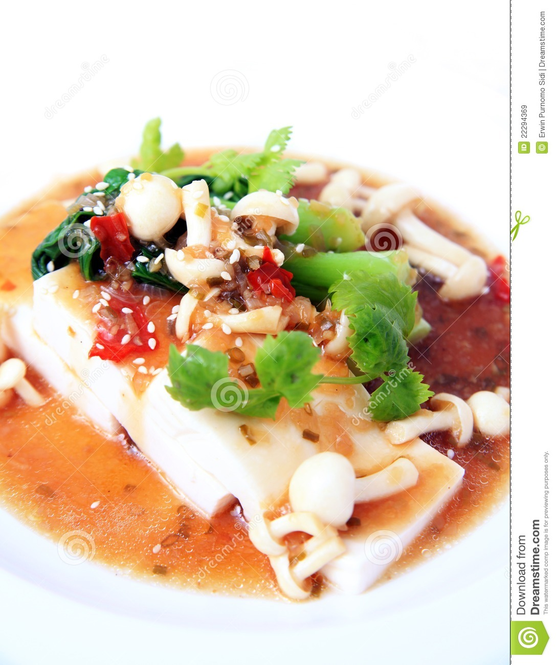 Chinese Tofu With Xo Sauce Royalty Free Stock Images - Image: 22294369