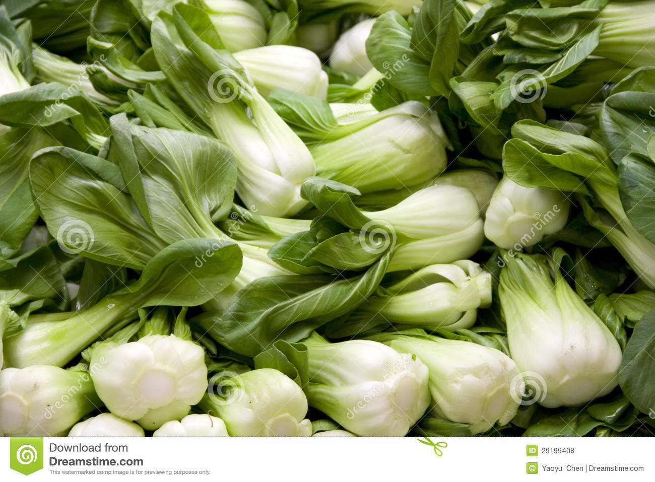 Chinese Vegetable Royalty Free Stock Photos - Image: 29199408