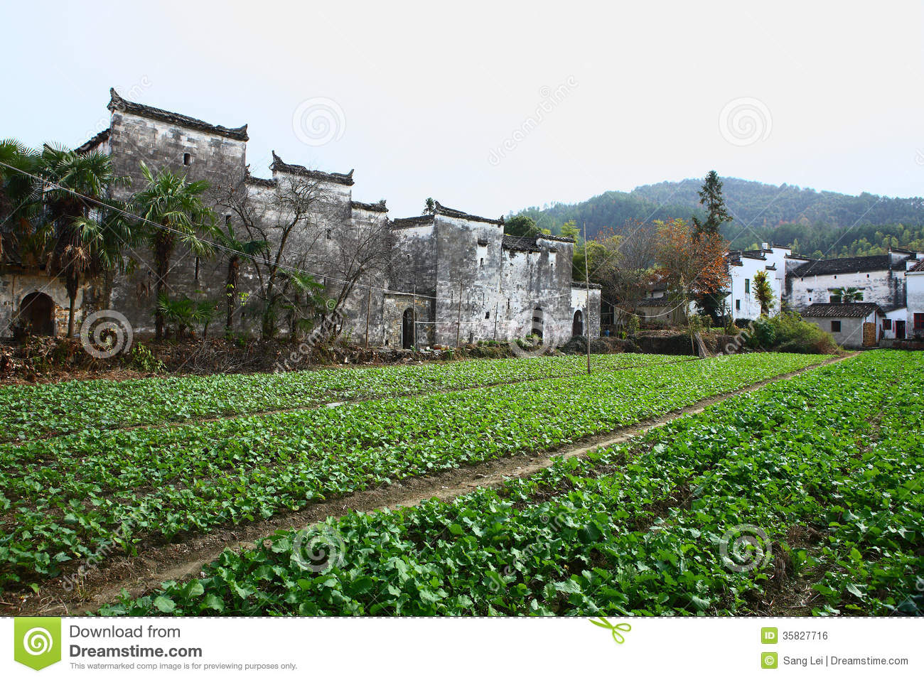 Wuyuan China  City new picture : The YanCun village in the WuYuan,china.