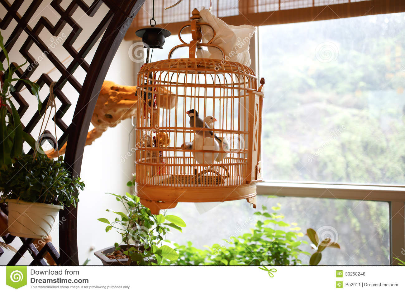 Chinese vogelkooien stock foto afbeelding bestaande uit birdcage 30258248 - Decoratie kooi ...