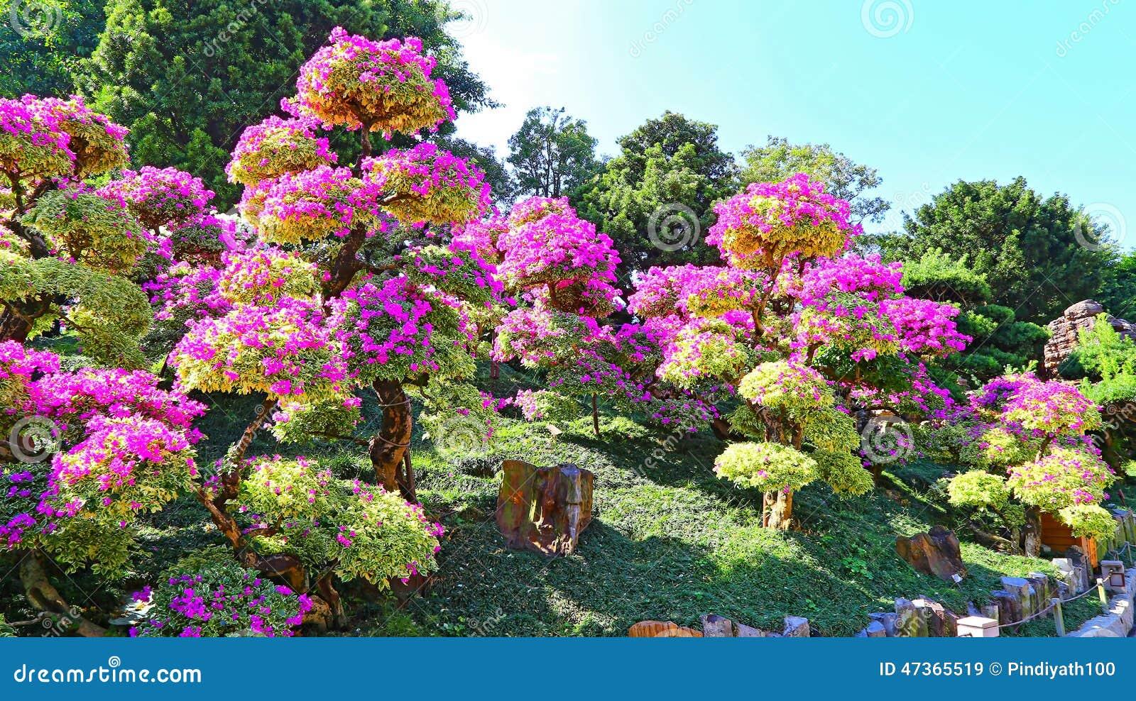 Chinese Zen Garden Landscape Stock Photo Image 47365519