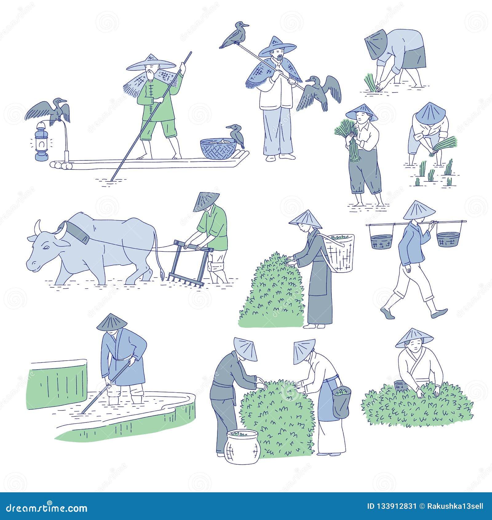 Chinesische Landwirte und Fischer in den traditionellen Kostümen Vektorlinie Kunstsatzleute-Betriebsreis, Tee anbauen und zu fisc